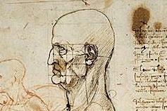L'oreille parfaite selon Leonardo da Vinci